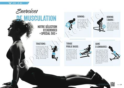Exercice musculation dos - Muscu maison